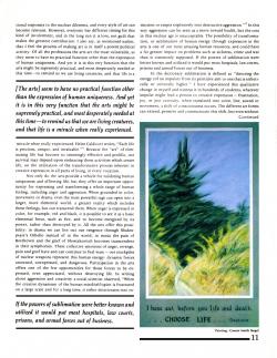 Activist Brochure, page 3