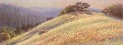 Blueberry Ridge
