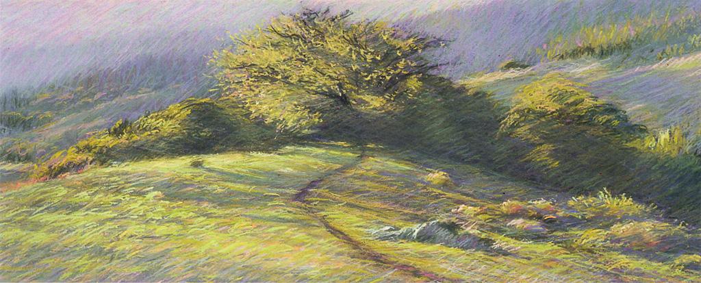 Oak Knoll, San Geronimo Valley